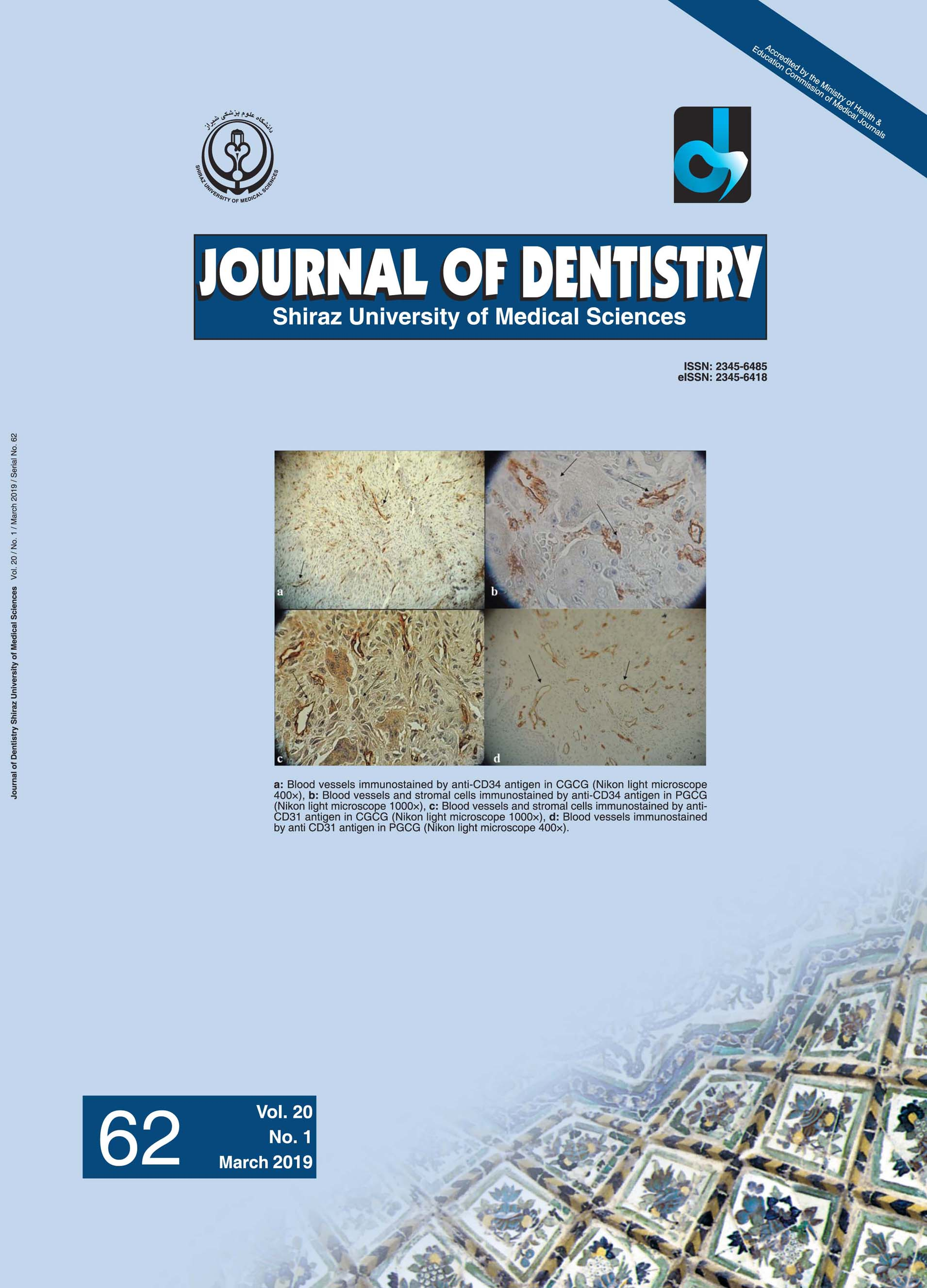 Journal of Dentistry